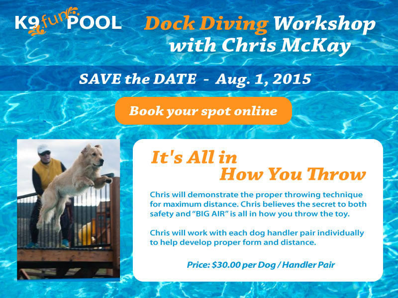Dock Diving Workshop