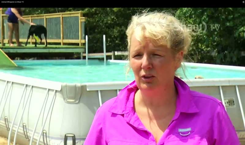 Animal Trainer, Bonnie Judd is interviewed at her dock diving pool for dogs
